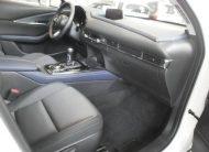 autosincro-8397547
