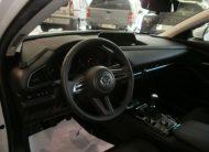 autosincro-8592024